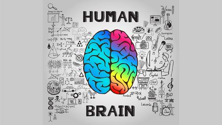 Content and cognition: Writing for the human mind
